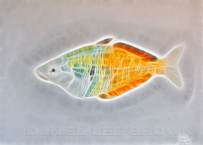 Boseman's Rainbow. Digitally produced from a colored pencil drawing.