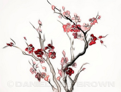 "Plum Blossoms.  For purchase information and prices, click the ""BUY"" button."