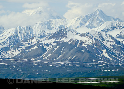 Along the Denali Highway, Alaska, 6-23-14. Cropped  image.